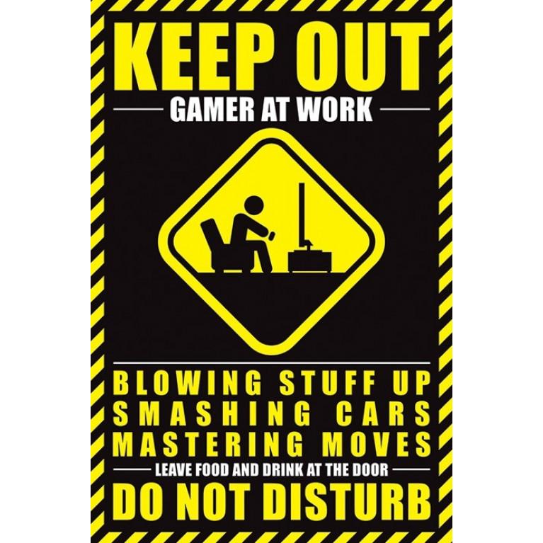 Постер «Gamer at work» 173