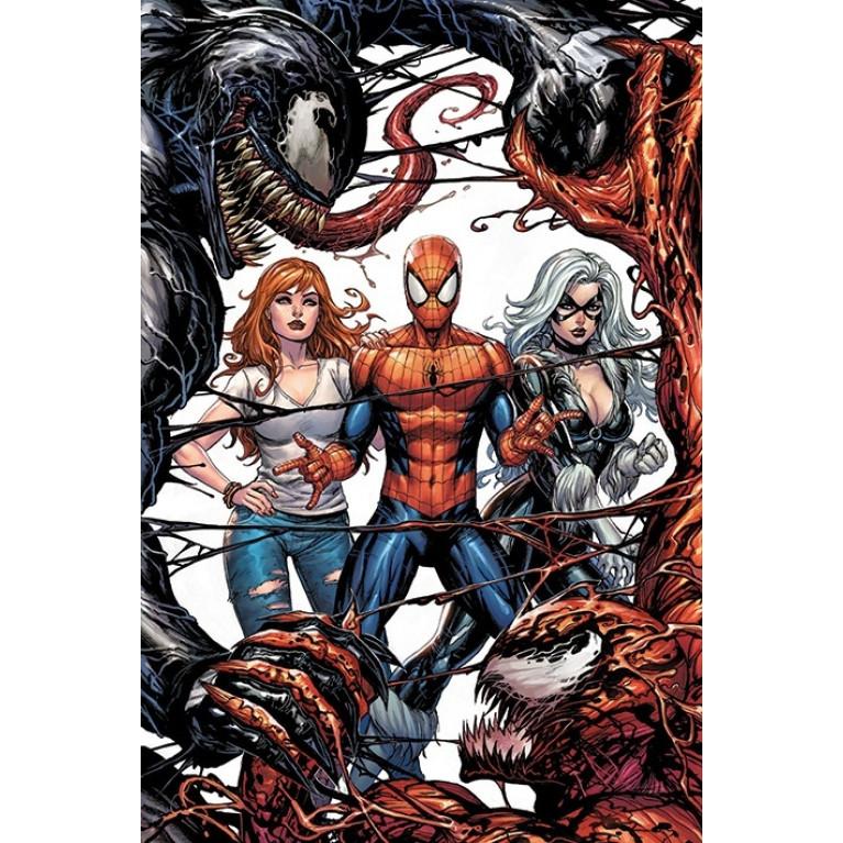 Постер «Человек-паук» 208